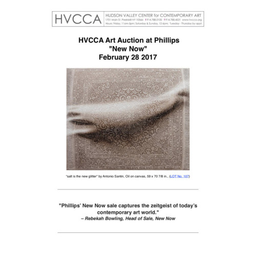 HVCCA Art Auction at Phillips New Now