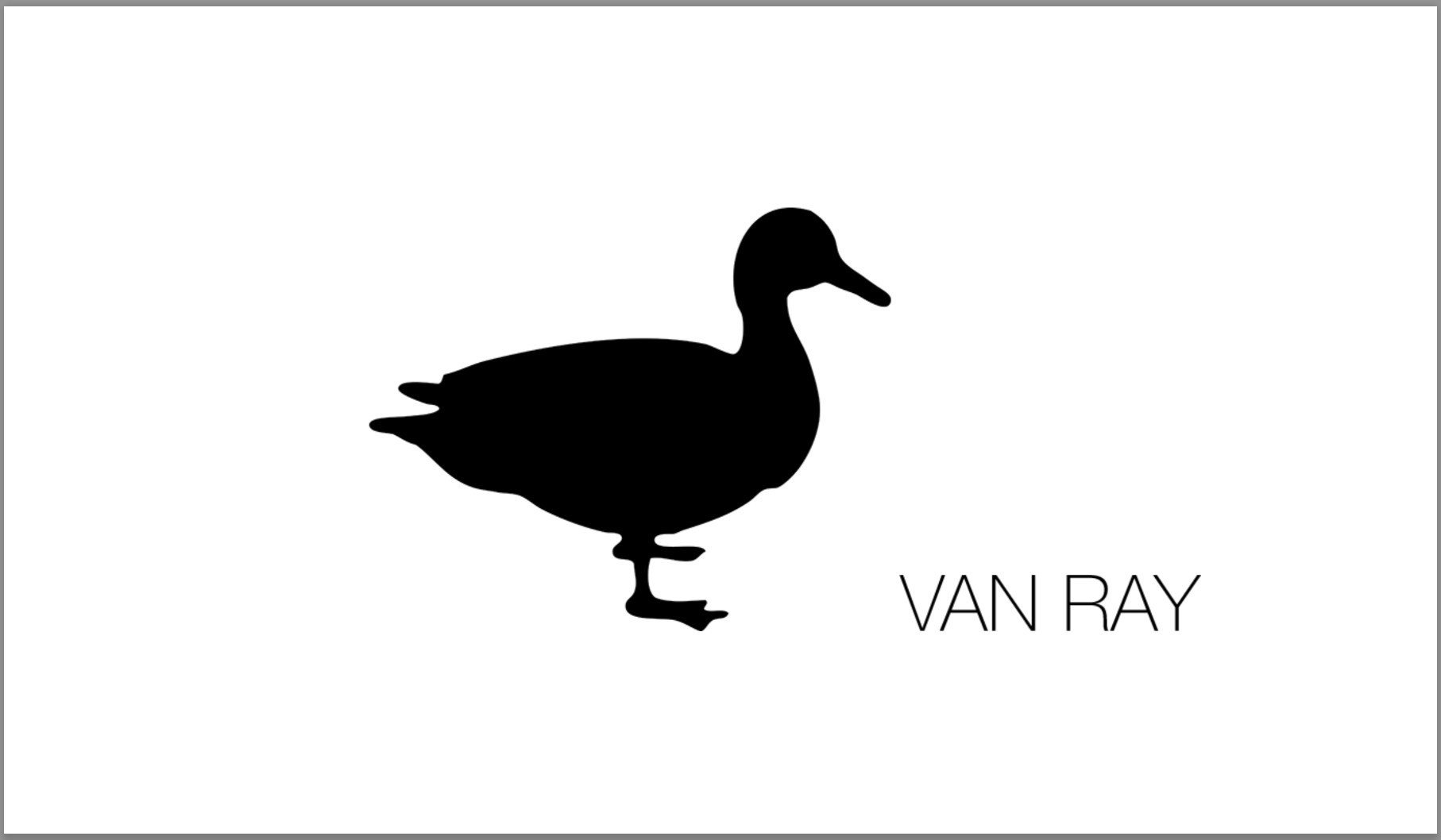 It's an honor to announce GIN HUANG Gallery have an opportunity to collaborate with German artist Van Ray.